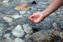 水質浄化事業(イメージ)