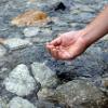 水質浄化イメージ